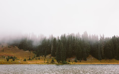 Are You Listening? (John Westrock) Tags: trees nature fog landscape outdoors foggy scenic pacificnorthwest washingtonstate tipsoolake canoneos5dmarkiii sigma35mmf14dghsmart johnwestrock