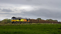 Logs in the gloom (mike.online) Tags: uk england train photo gm diesel britain shed rail railway locomotive brindle freight backline generalmotors class66 colas ukrail heavyhaul 66849 mikeonline
