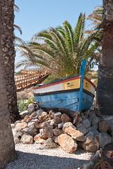 Carvoeiro boat (mandyann71) Tags: portugal boat colours palmtrees algarve carvoeiro
