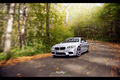BMW M5 F10 (StahlgrenDesign) Tags: autumn light tree speed photoshop painting nikon shot f10 slowshutter bmw 24mm nikkor retouch leafs m5 retouching rolling d800