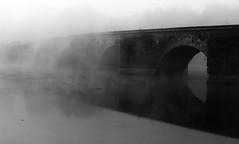 Ponte a Buriano (GiacomoMaria  ') Tags: bridge fog italia frog ponte leonardo toscana nebbia vinci mists arezzo valdarno leonardodavinci nebbie pivi buriano castiglionfibocchi evanescente ponteaburiano ponteburano