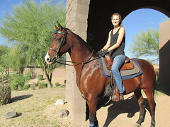 SierraNaturallyNumaa (Nancy D. Brown) Tags: arizona horse scottsdale stables loscedros naturallynumaa