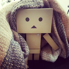 #danbo wants me to stop working and build blanket forts for him. (pixachii) Tags: square squareformat amaro danbo revoltech cardbo iphoneography instagramapp uploaded:by=instagram