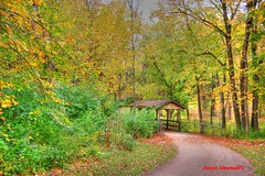 Covered Bridge at Kankakee River State Park in the Fall. (Anton Shomali - Thank you for over 3 million views) Tags: park camera wood bridge autumn trees portrait sky sun green fall nature colors leaves bikepath bicycle yellow clouds river photography illinois state path fallcolors sony rail shades il trail ill fallenleaves naturephotography biketrail autofocus kankakee coth supershot shadesofautumn kankakeeriverstatepark coth5 sony850