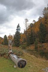 Turtmanntal   ,Au fond de la valle (luka116) Tags: automne schweiz switzerland suisse swiss svizzera paysage fontaine wallis octobre valais 2014 turtmanntal paysagevalais