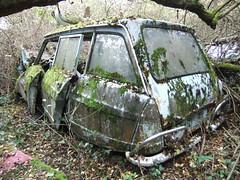 Citroen Ami 6 break A (Raphael Drake) Tags: 6 break citroen voiture ami wreck ami6 abandonn epave