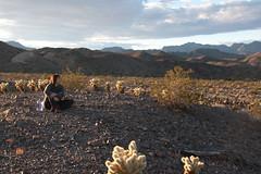 Gina near Nelson Nevada, Colorado River (cshubs) Tags: blue cactus woman mountains girl beautiful clouds cacti river colorado desert nevada nelson isolation infocus highquality