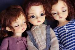 Mia's babylamb dolls (Legend_chii) Tags: miadoll mias aga soo babylamb miababylamb mia miadollbabylamb