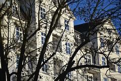 DSC_0585 (matthiasmayer410) Tags: hamburg natur architektur eppendorf altbauten gründerzeit immobilie wohnen renovieren mieten kaufen anlgene investieren schick elegant hochwertig drausen pflanzen