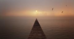 Fire (EmeraldImaging) Tags: lakejindabyne jindabyne snowymountains fog sunrise jetty birds nsw sydney cowra australia australian