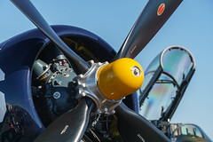 Class of '45 (pdebree) Tags: airshow plane airplane aircraft aeroplane flight fly flying flown flew flies warbird propellor corsairf4uf corsairf4 f4u4 f4u f4 corsairf4u4 corsair 45 class classof45 prop propeller