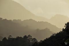 Cuenca Cuxtepeques (Jorge De Silva R) Tags: chiapasmexico jorgesilva reserva de la biosfera el triunfo nature legado verde cuenca cuxtepeques