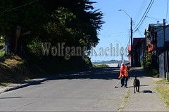 60072522 (wolfgangkaehler) Tags: 2016 southamerica southamerican chile chilean latinamerica chiloeislandchile ancud city streetscene person people man sweeping streetsweeper