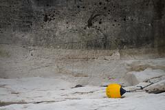 Coastal protection (sandterne) Tags: bulbjerg familie helios kultur kyst mennesker vand billedsprog m42 denmark coast