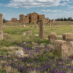 Ruines romaines de Sbeïtla thumbnail