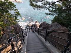 Katsurahama beach