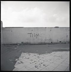(Ti Amo) (Robbie McIntosh) Tags: hasselblad hasselblad500cm carlzeissdistagon50mmf4ct 120 mediumformat 6x6 square negative film filmisnotdead moyenformat mittelformat medioformato pellicola selfdevelopment dyi homedevelopment bw blackandwhite monochrome kodaktmax100 kodak tmax 100 decay seaside newtopographic newtopography landscape shoreline ruins licola wall studional writing graffiti tiamo