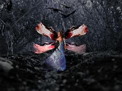 bird fairy (bankialon) Tags: amputee love photography photoshop prosthetic bride birds