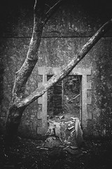 No Need To Knock (ShrubMonkey (Julian Heritage)) Tags: talysarn hall dorothea quarry nantlle house slate disused derelict abandoned forgotten ruin ruined eerie landscape wales building secluded isolation mountains snowdonia sonyalpha tree door cottage