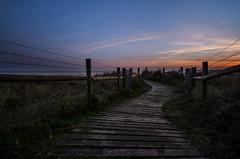 The path of least resistance (D1g1tal Eye) Tags: path beach dunes sea coast sky grass barbedwire post dusk sunset nikon d7000