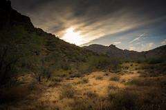 20170409-DSC_5221 (lilnjn) Tags: arizona southwestunitedstates travel unitedstates whitetank