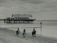 Cleethorpes 14.04.2017 (Reynard_1884) Tags: seasideresort pier micro43rds mono cleethorpespier goodfriday easter lincolnshire seafront coast uk olympusomd olympusomdem5 olympus england greatbritain cleethorpes blackwhite horses mirrorless monotone riverhumber microfourthirds beach blackandwhite monochrome artinbw northeastlincolnshire bw horse mu43 horseriding em5 coastaltown silverefexpro2 seaside