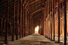 Stick Shed, Murtoa VIC [Explored] (phunnyfotos) Tags: building heritage history architecture forest sticks nikon timber interior wwii engineering australia victoria structure historic ww2 vic poles 1941 grainstore