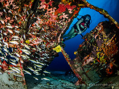 P8080305 (Kadu Pinheiro - Underwater Photography) Tags: jamaica karina oliani kadupinheiro