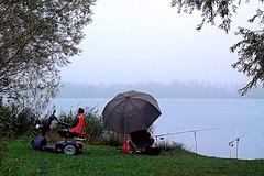 Visser (HGerritsen) Tags: arnhem vissen elst rijkerswoerdseplassen amzaf
