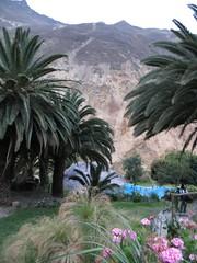 Colca Canyon-67