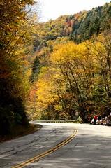 Route 100, VT (VAkula's YottaBytes !!!) Tags: road trees usa green fall yellow nikon vermont day foliage vt route100 scenicroute100