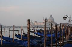 141007 VENEZIA (83) (Carlos Octavio Uranga) Tags: amor venecia venezia amore veneto serenissima venessia