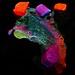 Fluorescent Trick or Treat: Rock Candy on Scoria - UVc
