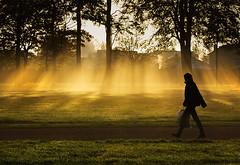 Park Walk 2... (Digital Diary........) Tags: uk autumn mist fog walk walker beams sthelens merseyside sherdley goodlight sherdleypark
