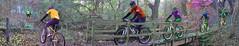 Colourful Rider crosses Bridge (benjamin.seeley) Tags: bike sport spectrum coursework onyerbike