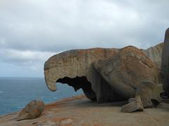 DSCN1111 (ferenc.puskas81) Tags: ocean sea island october rocks mare south australia september kangaroo settembre oceano remarkable ottobre oceania 2014
