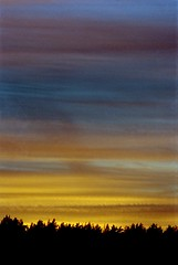 image122 (Getthefunk) Tags: sunset film kodak 28 135 om portra 800 zuiko 2n