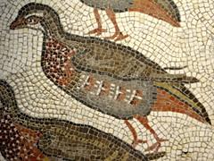Madrid - Museo Arqueologico Nacional (Sheepdog Rex) Tags: madrid birds mosaics partridges museoarqueologiconacional