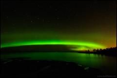 Norrsken (Jonas Thomn) Tags: longexposure trees sea green night stars cliffs aurora natt trd auroraborealis havet hav foxfire grn norrsken stjrnor revontulet klippor grnt lngexponering