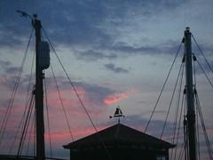 de haven (13)