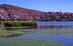 Macedonia, Greece, the lake with part of the city of Kastoria in the backdrop (Macedonia Travel & News) Tags: macedonia ancient culture vergina sun hellenic republic mavrovo nato eu fifa uefa un fiba greecemacedonia macedonianstar verginasun aegeansea macedoniablog macedonianarchitecture kastoria 319654n macedoniagreece makedonia timeless macedonian macédoine mazedonien μακεδονια македонија travel prilep tetovo bitola kumanovo veles gostivar strumica stip struga negotino kavadarsi gevgelija skopje debar matka ohrid heraclea lyncestis