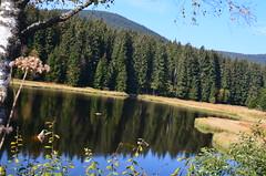 Schluchsee (barrabez_germany) Tags: panorama lake germany see natur schwarzwald blackforest schiff schluchsee feldberg stausee sddeutschland gletschersee southgermany schwarza dreiseenbahn