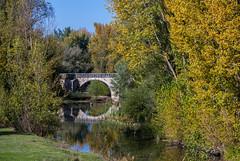 Colores de otoño (javipaper) Tags: