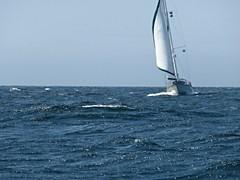 Circumnavigating Vancouver Island 2014 (LarrynJill) Tags: ocean travel blue sea canada haven sailboat boat marine bc sails bluewater islander vancouverisland