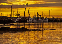 Harbor Gold (todonn9364) Tags: sunrisesunset northhead grandmanannewbrunswick