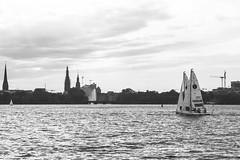 Segelbundesliga in Hamburg (creativephil) Tags: city sunset sun sexy skyline see meer wasser sailing wind hamburg sonne segeln wellen j70 segelbundesliga