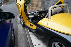DSC04477 (macco) Tags: auto car automobile renault  matra avantime