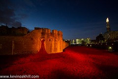 Poppies Tower of London (www.kevinoakhill.com) Tags: world camera city morning bridge november red people sun london tower art beautiful sunrise canon wonderful soldier photography eos 1 early photo amazing war photos britain hill capital sunday crowd tourist tourists professional busy fallen installation 7d poppy poppies soldiers british tribute remembrance rise incredible crowds toweroflondon towerhill 2014 i toweroflondonpoppies poppiestoweroflondon