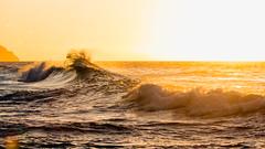 golden III (IanLudwig) Tags: canon photography hawaii kauai hawaiian beaches tog togs niksoftware hawaiiphotos vsco cep4 canon5dmkiii hawaiianphotography 5dmkiii canon5dmarkiii ianludwig canon70200mmf28lisusmii lightroom5 canon2xtciii adobephotoshopcc