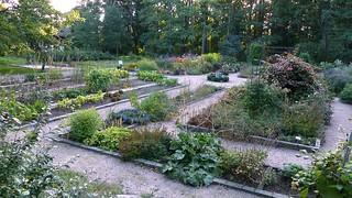 Ornamental plants at the Överby garden school (Espoo, 20140903)